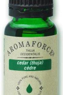 Cedar - Thuja Occidentalis - Aromaforce