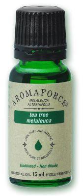 Tea Tree - Melaleuca Alternifolia - Aromaforce®