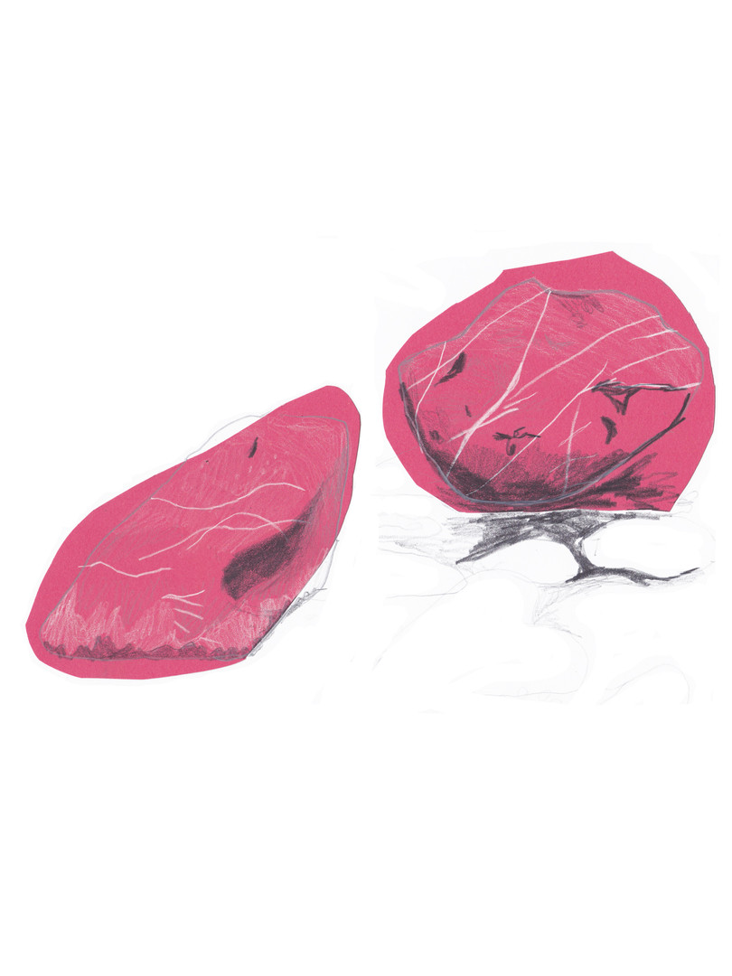 pink stones.jpg