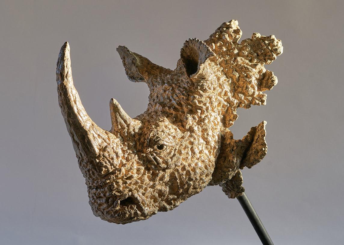 Hoekzema_Square-Lipped Rhino_14.jpg