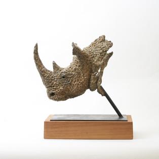Hoekzema_Square-Lipped Rhino_02.jpg