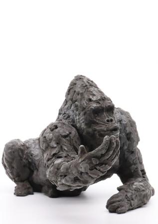 JFH Gorilla aug 2021_33.JPG