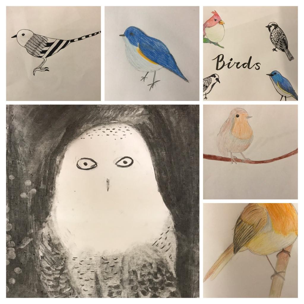 Vogels Tekenen Kinderen