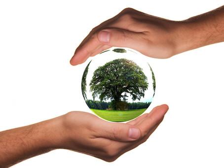 ¿Por qué es importante utilizar materiales Biodegradables?