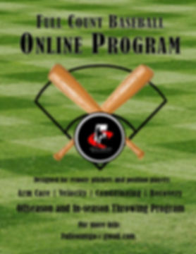 Online Program Flyer 1.jpg