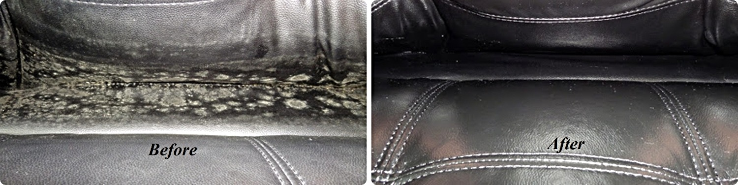 Leather Cleaning & Protection
