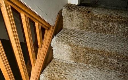 Water damage restoration Residential