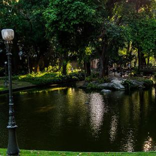 Nos Jardins do Palácio