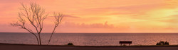 Glorious Morning Twilight (2)