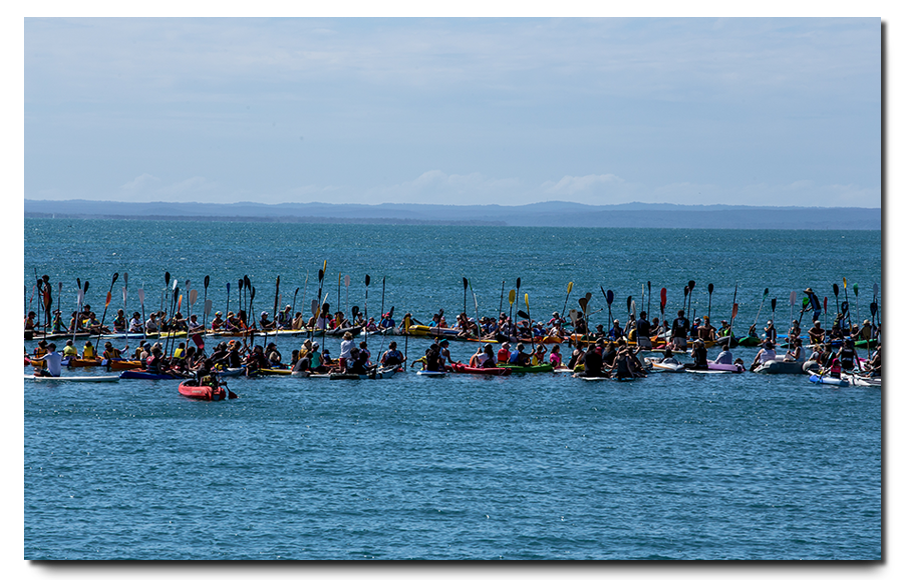 Paddle for Whales