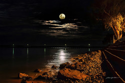 Moonlight Trail