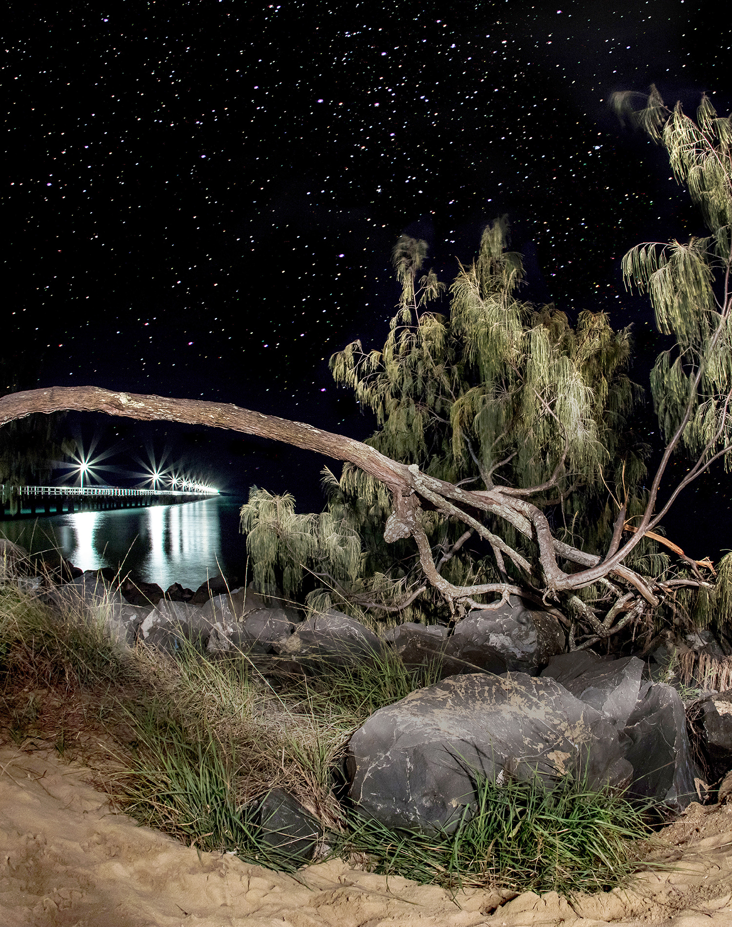 Starry King Tide