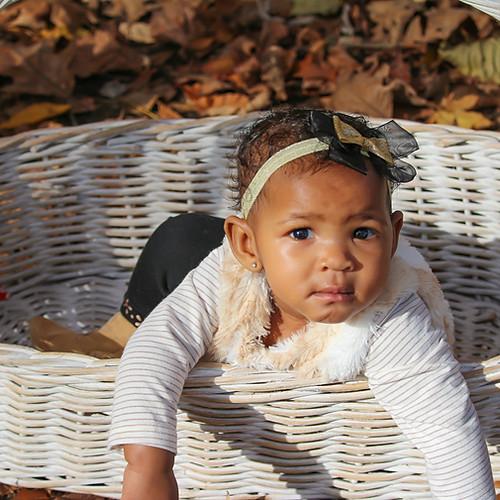 Ava~ Fall Photos