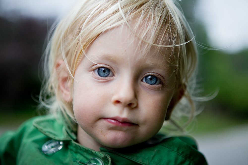 family photography hamilton toronto oakville burlington