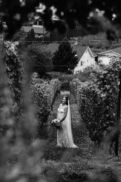 okanagan winery wedding