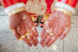 indian wedding toronto