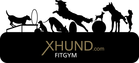 Logo_Fitgym.png