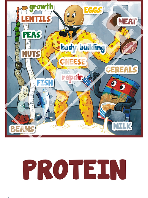 Nutrition cartoon posters