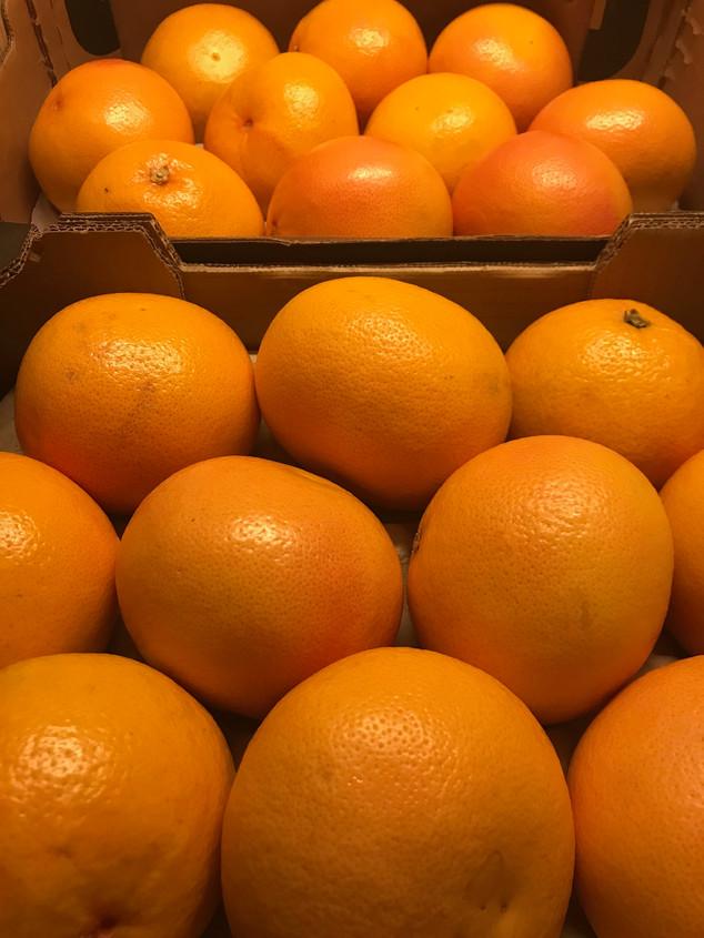 Frische Früchte bereit zur Verarbeitung