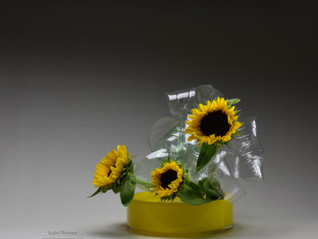 Recycling Plastic and Ikebana for Children