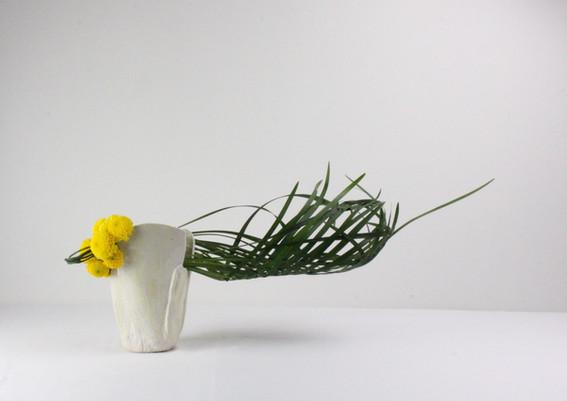 Louise Worner Liriope and crysanthemum.J