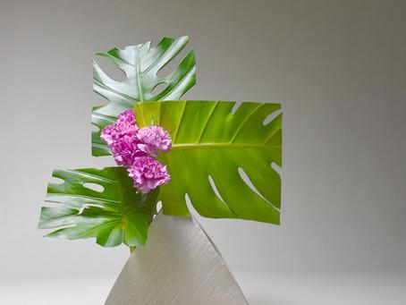 Practicing Geometry Through Ikebana