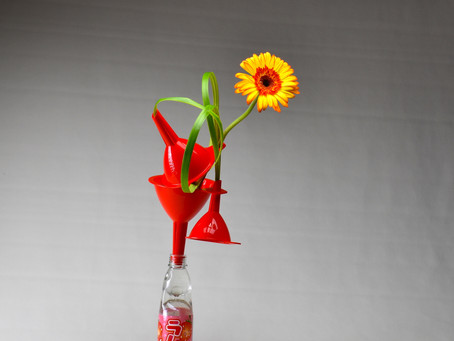 Kitchen Ikebana for Children