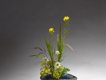 Mazezashi with Weeds