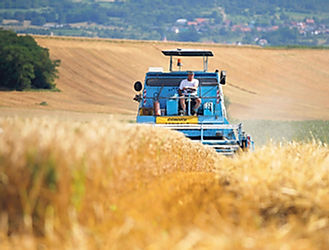 Agriculture-les-mauvaises-recoltes-fragi
