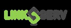 link serv logo new font.png
