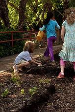 childrens garden.jpg