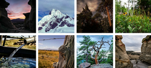 Courtney Hicks' nature photographs