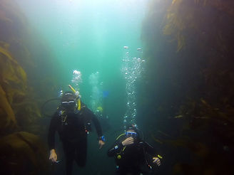 Fun Diving in Cork Ireland