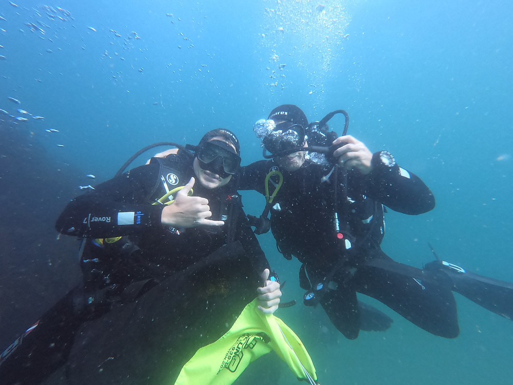 Diving in Ireland in Nohoval Cove, Co. Cork