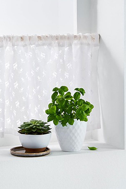 Bistro Curtain 180x46 cm, White by Tchibo