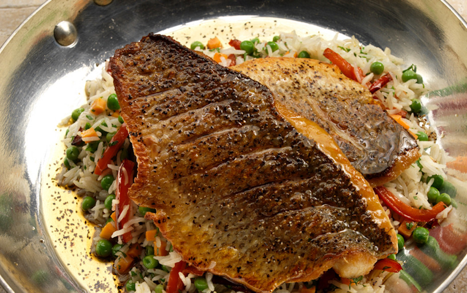 Bass on fried rice| fish food stylist