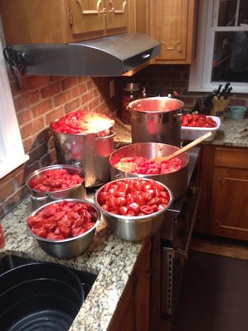 San Marzano tomatoes cut in bowls.JPG
