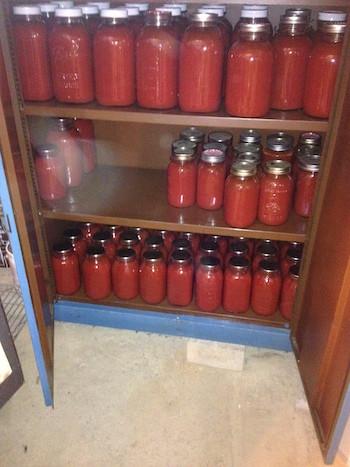 Storing San Marzano tomatoes.JPG