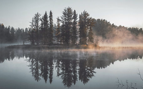 Fog above a lake in a forest