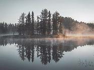 Reflexo enevoada Floresta