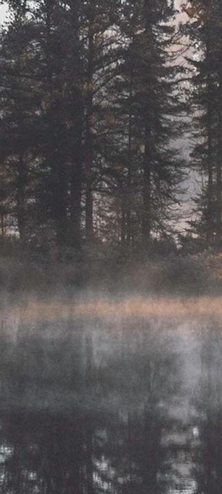 สะท้อนป่าหมอก