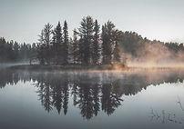 Misty Wald Spiegelung