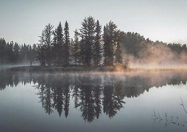 Misty Forest Reflection