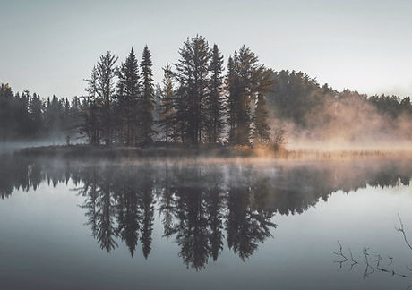 Misty Forest Reflection