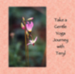 TerylYogaGentle-Cover.JPG
