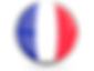 france_glossy_round_icon_640.png
