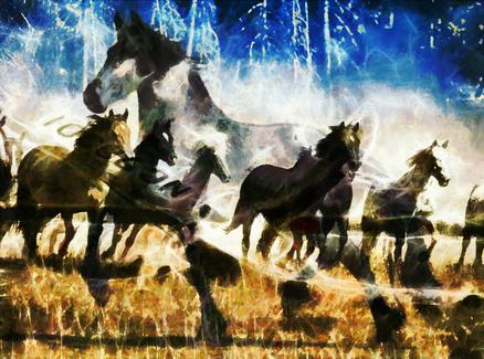 Behold A Dark Horse!