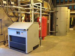 Biomass 1.jpg