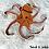Thumbnail: Mama Octopus Crochet