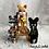 Thumbnail: Anna & the 3 cats